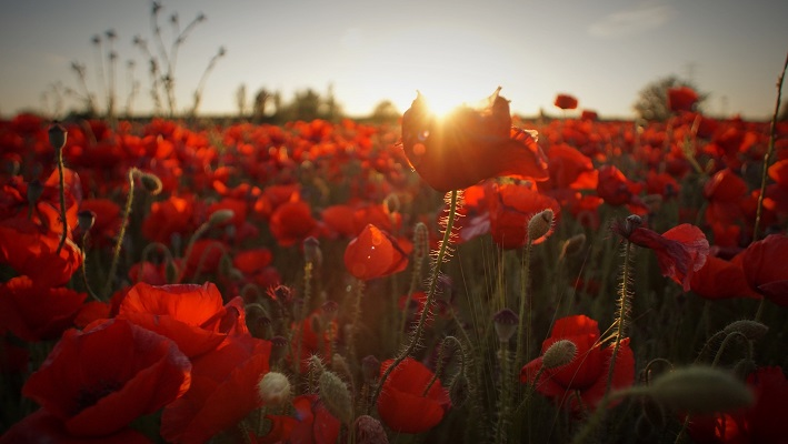 Anzac Day trading hours 2021