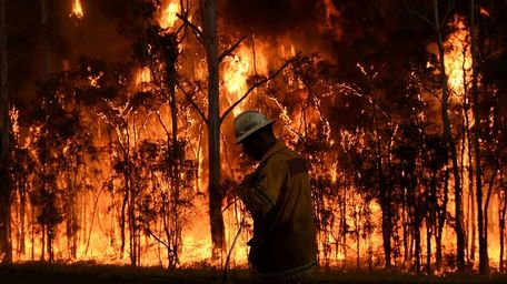Bushfire resilience resources QLD & NSW